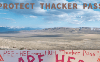 Webinar with Will Falk: Protect Thacker Pass